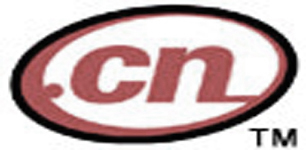 cn domain category