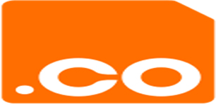 .Co Top Level Domain