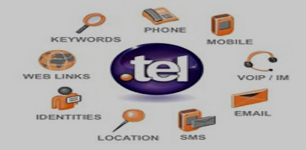 tel domain category