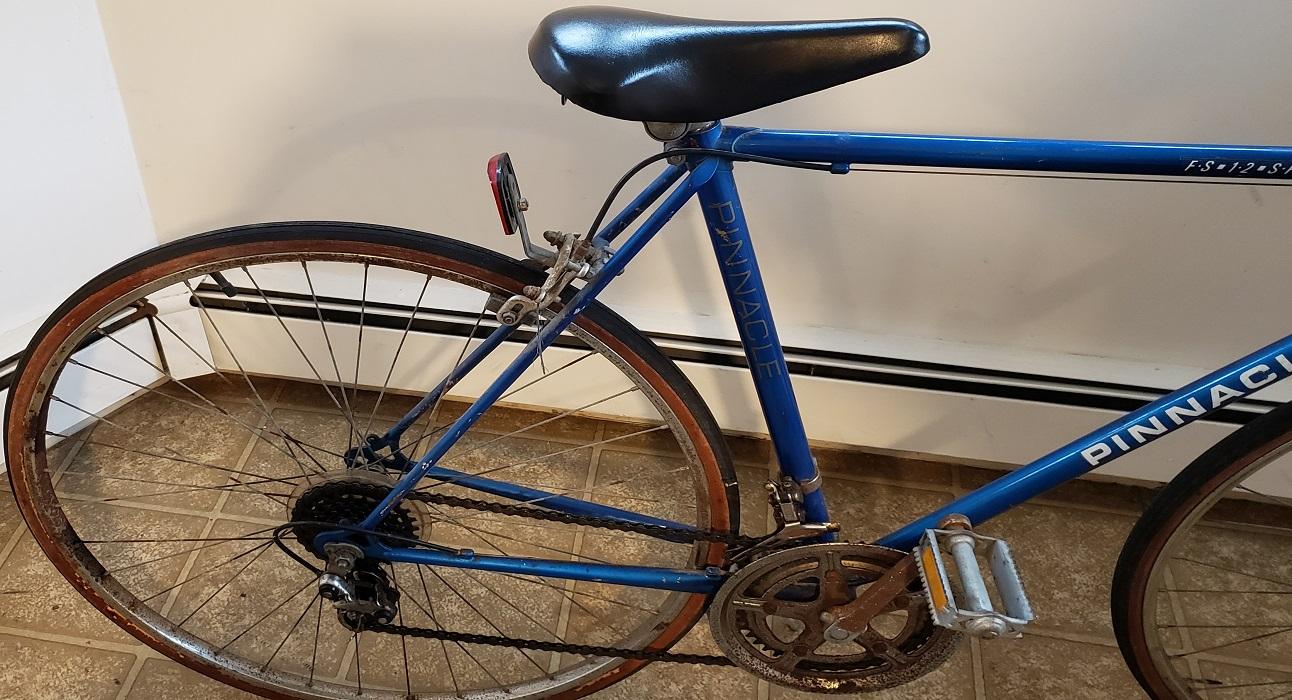 pinnacle-12speed-bicycle